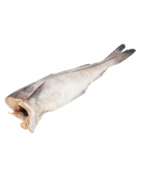 Пикша без головы свежемороженая